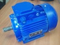 Электродвигатель АИР 80 В2 (2,2 кВт 3000 об/мин)