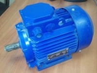 Электродвигатель АИР 112 МВ8 (3 кВт 750 об/мин)