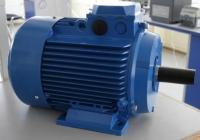 Электродвигатель АИР 132 М8 (5,5 кВт 750 об/мин)